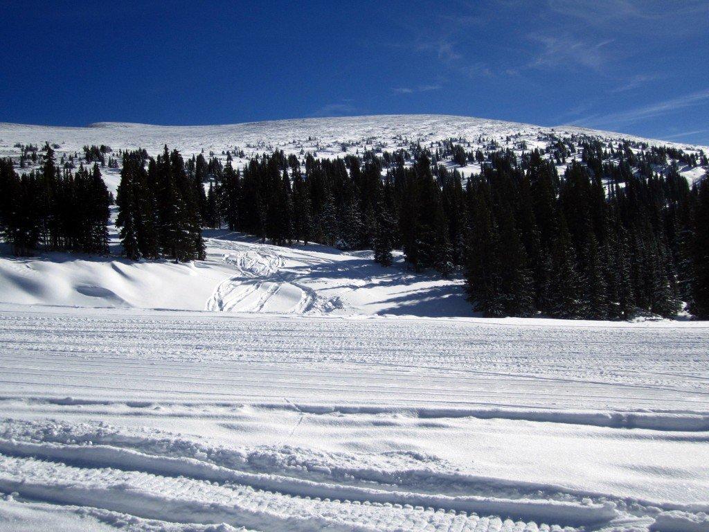 Snowmobile (59)