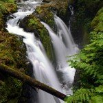 Hiking to Sol Duc Falls