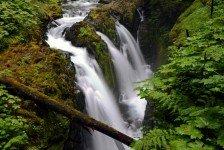 Sol Duc Falls (23)