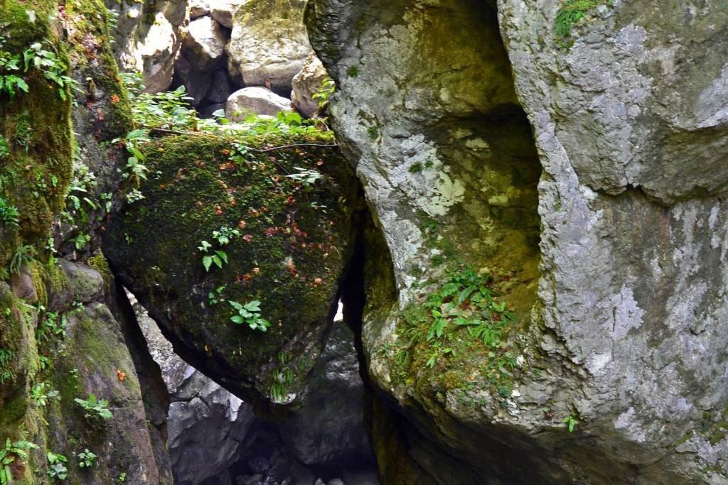 Bear's Head at Tolmin Gorge