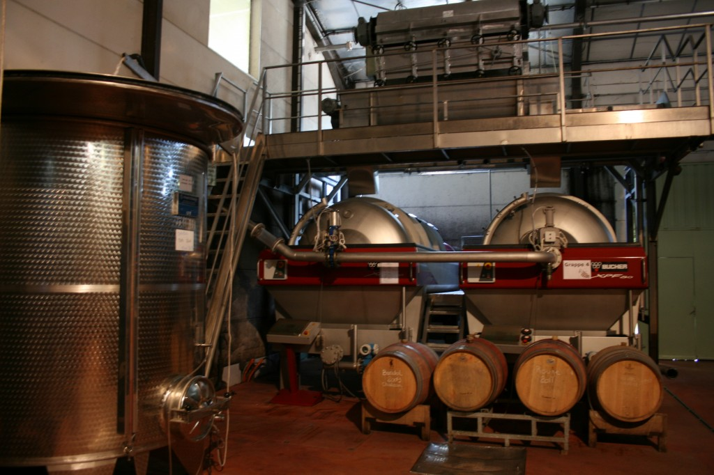 Vinification Process
