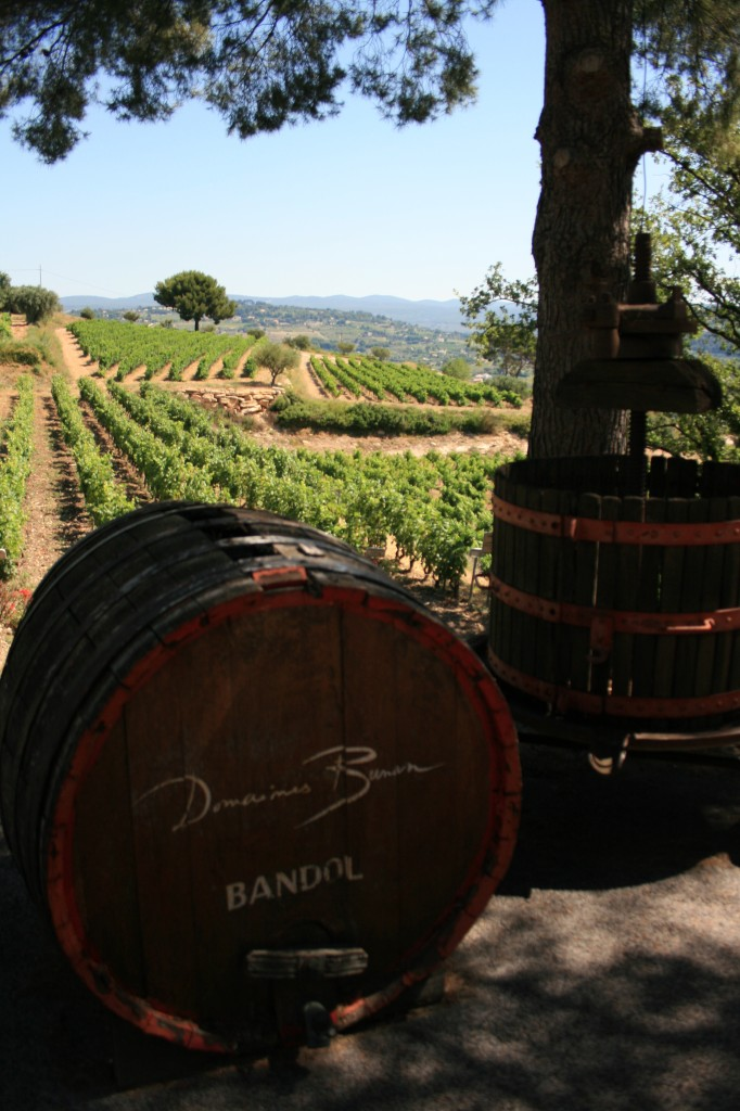 Provence vineyard and wine barrel