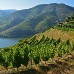 8 Reasons to Take a Douro River Cruise in Portugal with Viking