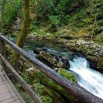 Vintgar Gorge: A True Slovenian Gem