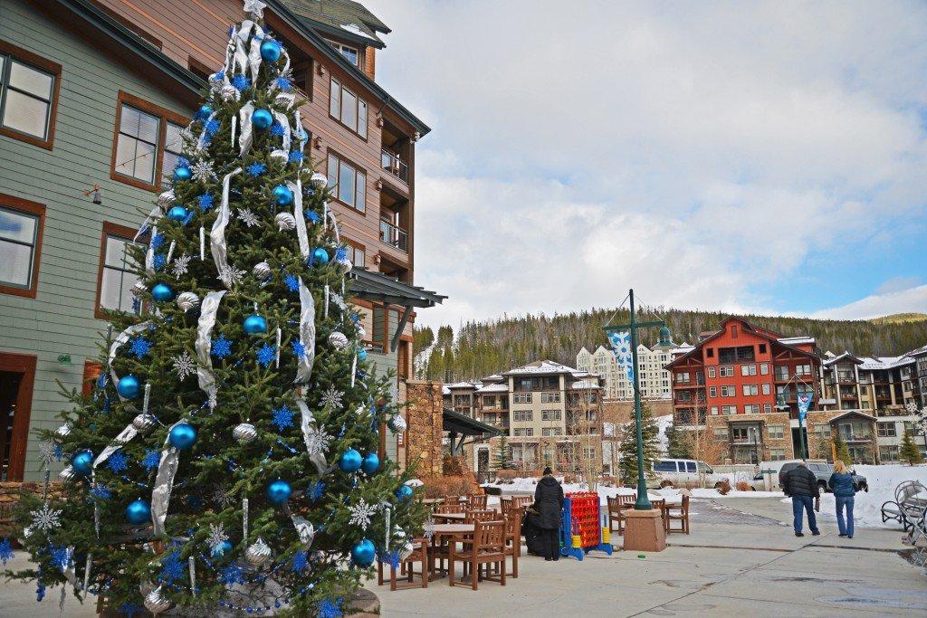 Christmas Tree Colorado