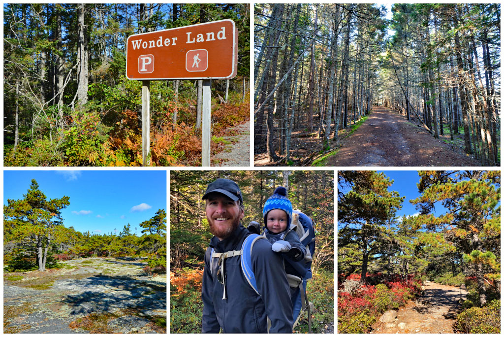 Family Friendly Hikes in Acadia National Park